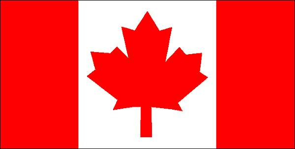 Le Canada cherche de jeunes diplômés étrangers (POSTULER)
