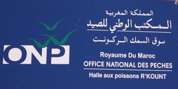 المكتب الوطني للصيد يعلن عن مباريات توظيف في عدة مناصب وتخصصات آخر أجل 5 غشت 2019