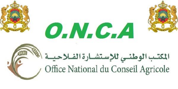 Recrutement (67) postes à l'Office National du Conseil Agricole