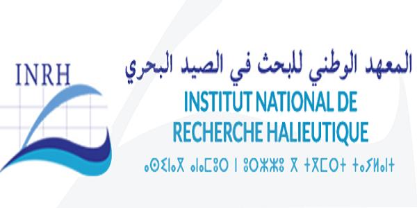 Recrutement (10) postes à l'Institut National de Recherche Halieutique ، توظيف (10) منصب