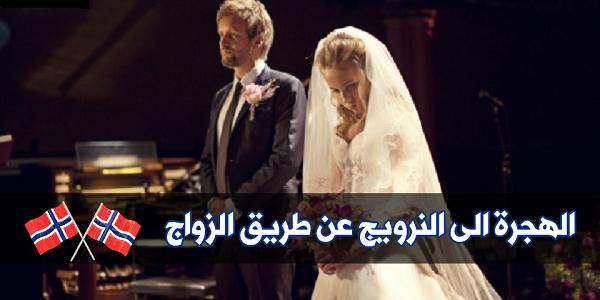 زواج مصر زفاف تعارف موقع