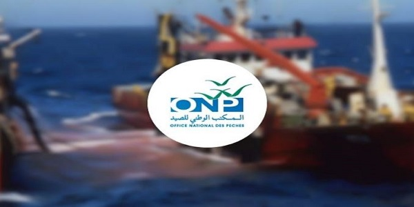 كونكورات جداد في المكتب الوطني للصيد آخر أجل 23 غشت 2021