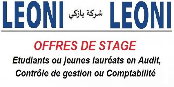 Offres de stage chez Leoni en Audit, Contrôle de gestion et Comptabilité