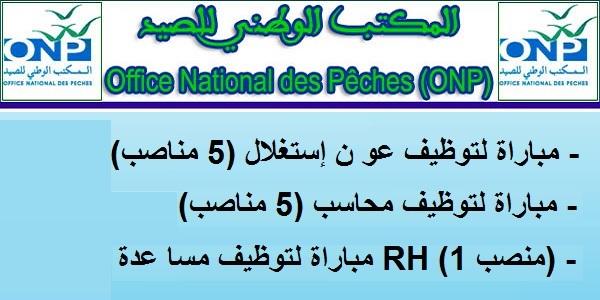 Recrutement (11) postes à l'Office National des Pêches (Comptables – Assistant RH – Techniciens – Techniciens spécialisés) – توظيف (11) منصب