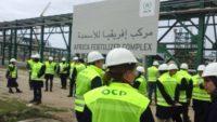 Recrutement chez l'Office Chérifien des Phosphates (OCP) – توظيف في العديد من المناصب
