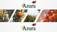 شركة Le groupe Azura تعلن عن حملة توظيف في عدة تخصصات