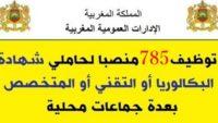 الإدارات العمومية المغربية: توظيف 785 منصبا لحاملي شهادة البكالوريا أو التقني أو المتخصص بعدة جماعات محلية. الترشيح قبل 4 مارس 2020