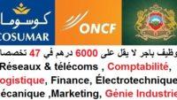 توظيف باجر لا يقل على 6000 درهم في 47 تخصصات : Électricité , Automatisme, Assurance, Comptabilité, RH, Finance, Mécanique, IT, BTP, Génie Industriel