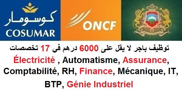 توظيف باجر لا يقل على 6000 درهم في 17 تخصصات : Électricité , Automatisme, Assurance, Comptabilité, RH, Finance, Mécanique, IT, BTP, Génie Industriel