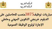 الوظيفة العمومية: توظيف 3875 منصبا في عدة تخصصات ابتداء من النيفو بكالوريا والبكالوريا فما فوق. الترشيح قبل 7 فبراير 2020