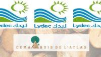Recrutement chez Lydec & Cema Bois de l'Atlas (AccountingManager – Ingénieur Organisation) – توظيف (2) منصب