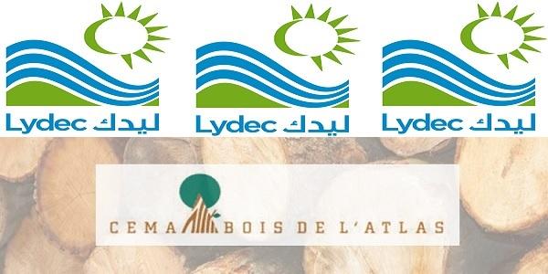Recrutement chez Lydec & Cema Bois de L'Atlas (Ingénieur HSE – Chef d'équipe Production – Technicien outillage) – توظيف (3) منصب