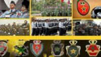 القوات المسلحة الملكية: مباراة ولوج سلك تلاميذ ضباط المدرسة الملكية الجوية لسنة 2021 سلك الإجازة شعبة الطيران. آخر أجل هو 30 أبريل 2021