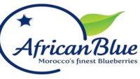 هام للشباب العاطل.. شركة African Blue إعلان عن حملة توظيف في عدة تخصصات
