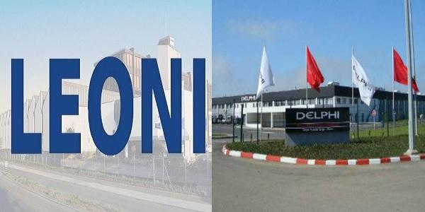 شركة LEONI & DELPHI تعلن عن حملة توظيف في عدة تخصصات