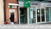 شركة BDSI MAROC تعلن عن حملة توظيف في عدة تخصصات