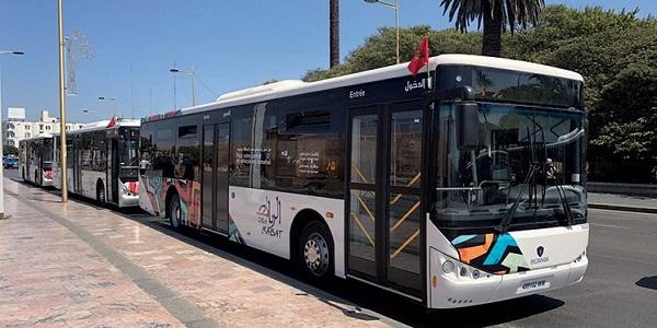 شركة CITY BUS تعلن عن حملة توظيف في عدة تخصصات