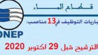 الوكالة المستقلة الجماعية لتوزيع الماء والكهرباء بتادلة : مباريات التوظيف في 13 مناصب في عدة تخصصات. الترشيح قبل 29 اكتوبر 2020