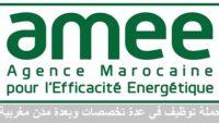 الوكالة المغربية للنجاعة الطاقية يعلن عن مباريات توظيف في عدة مناصب وتخصصات آخر أجل 11 دجنبر 2020