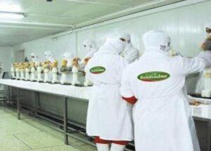جديد الوظيفة : شركة KOUTOUBIA تعلن عن حملة توظيف في عدة تخصصات