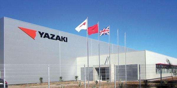 شركة AZURA GROUP & YAZAKI MOROCCO تعلن عن حملة توظيف في عدة تخصصات
